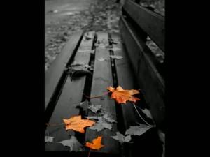 Время разобраться в себе и научиться радоваться жизни