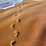 Притча дня. Следы на песке