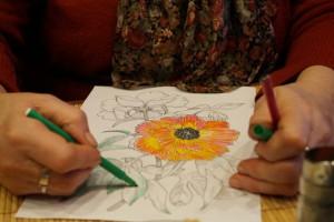 женский свет, изобилие женственности, Центр развития для взрослых Светланы Дьяконовой