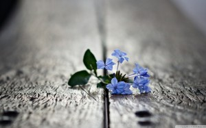 красота в тебе, как разобраться в себе, предназначение души