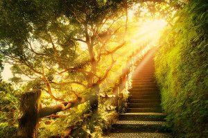 медитация, красота в тебе